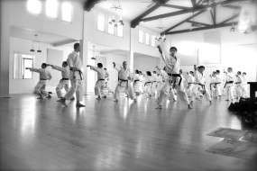 Ubl Sensei Seminars April 11-12