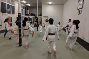 2019 SV Karate's Annual Charity Kick-a-thon to Benefit ChallengeDay